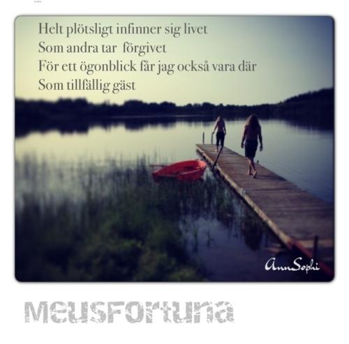 IMG_8925[1]